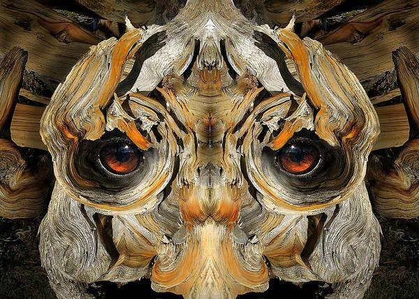 Digital Art - Woody 96 by Rick Mosher