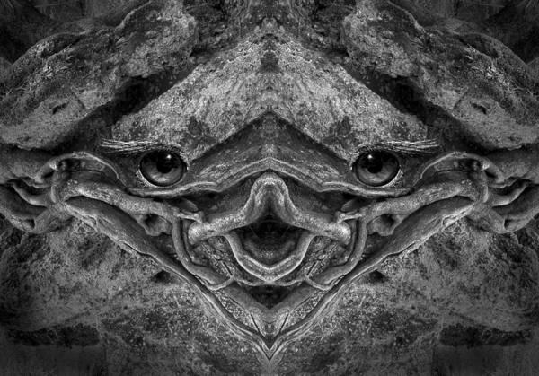 Digital Art - Woody 98bw by Rick Mosher