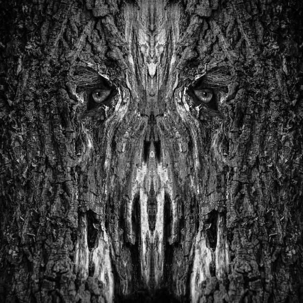 Digital Art - Woody 99bw by Rick Mosher