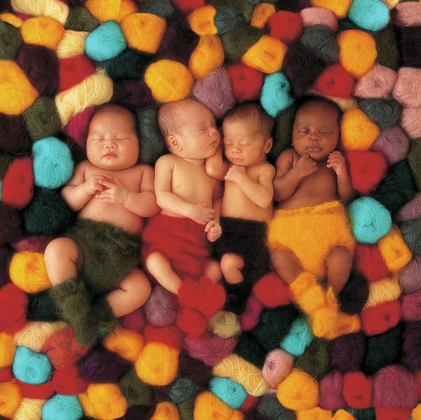Winter Holiday Photograph - Wool Babies by Anne Geddes