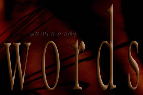 Photograph - Words Are Only Words 5 by Vicki Ferrari