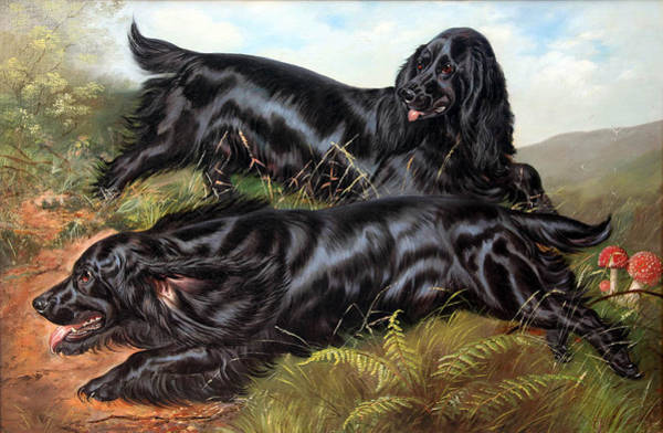 Field Spaniel Painting - Working Field Spaniels by Celestial Images