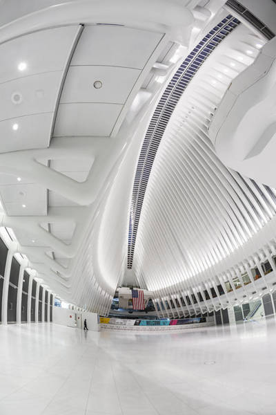 Photograph - World Trade Center Wtc Oculus Hub by Susan Candelario