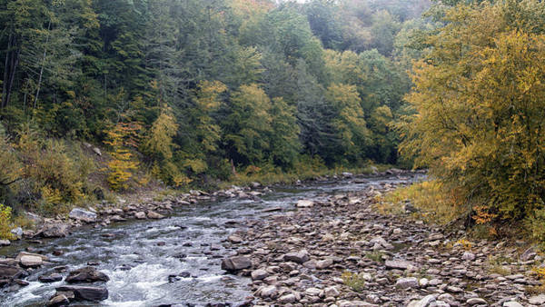 Photograph - Worlds End State Park Loyalsock Creek by Frank Morales Jr