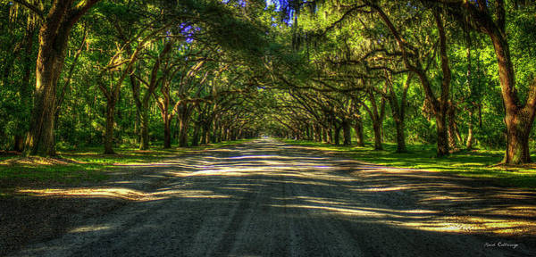 Photograph - Shadows Of Wormsloe Plantation Oak Avenue Georgia Art by Reid Callaway