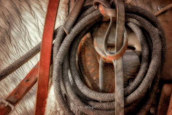 Photograph - Wrangler Tools by Steve Kelley