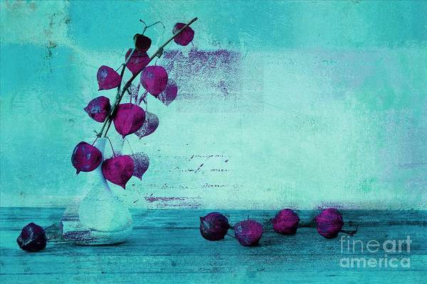 Aqua Blue Digital Art - Wrapped Beauties - T43a by Variance Collections
