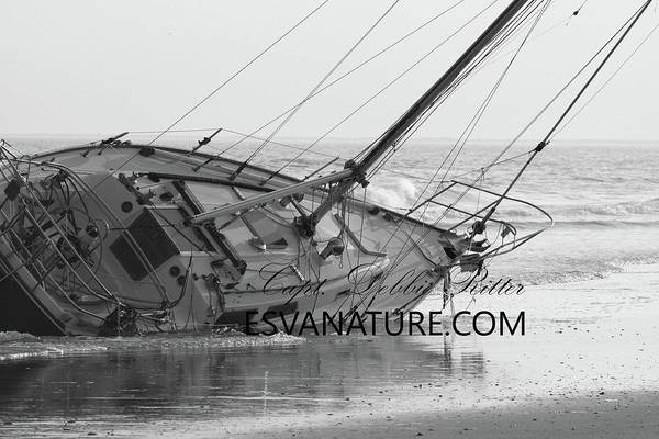 Photograph - Wrecked Sailboat by Captain Debbie Ritter