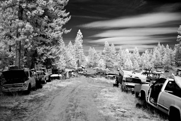 Photograph - Wrecking Yard In Infrared 3 by Lee Santa