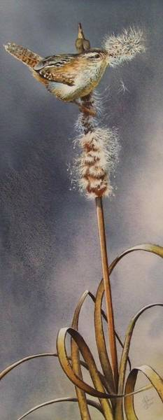 Painting - Wren And Cattails by Greg and Linda Halom