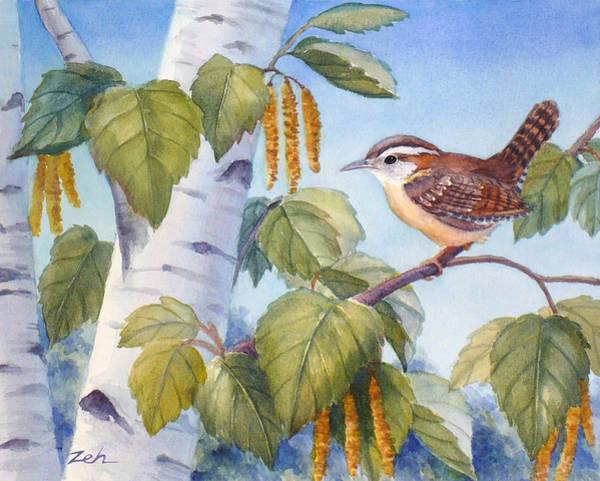 Painting - Wren In A Birch Tree by Janet Zeh
