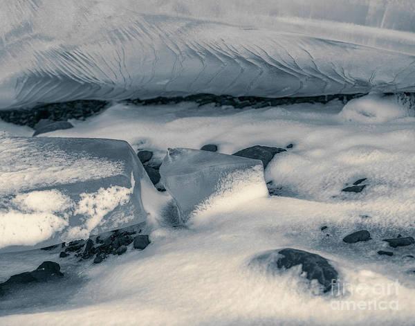 Photograph - Wrinkled by Patti Schulze