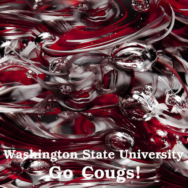 Photograph - Wsu - Go Cougs by David Patterson