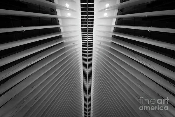 Oculus Wall Art - Photograph - Wtc Symmetry by Michael Ver Sprill