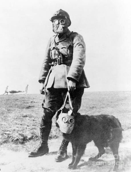 Wall Art - Photograph - Wwi, French Soldier And Dog Wearing Gas by Science Source