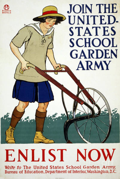 Drawing - Wwi Poster, Garden Army.  by Granger