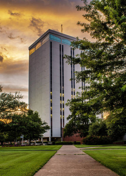 Photograph - Wyly Tower, Louisiana Tech University by Chris Coffee