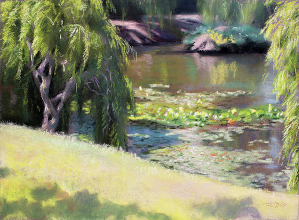 Pastel - Wynberg Lily Pond by Christopher Reid