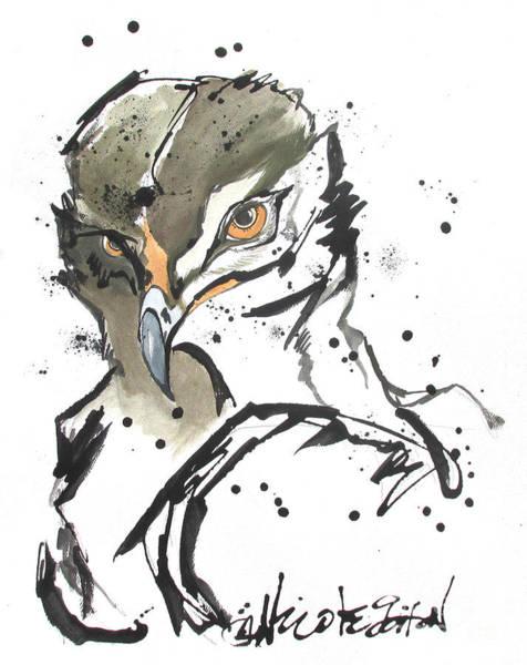 Painting - Wyoming Raptor by Nicole Gaitan