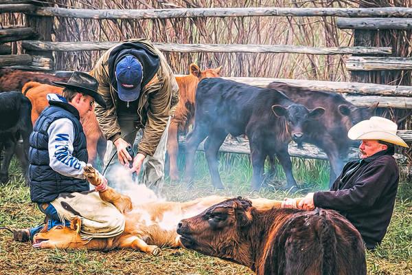 Branding Iron Photograph - Wyoming Branding by Maria Coulson