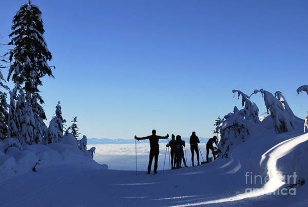 Photograph - X-country Skiing  by Bill Thomson