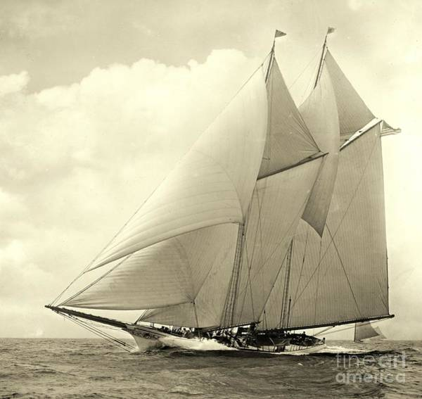 Americas Cup Photograph - Yacht America 1910 by Padre Art