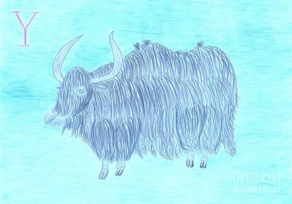 Yak Drawing - Yada The Yak by Leonore VanScheidt