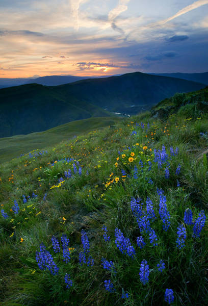 Parsley Photograph - Yakima River Canyon Sunset by Mike  Dawson