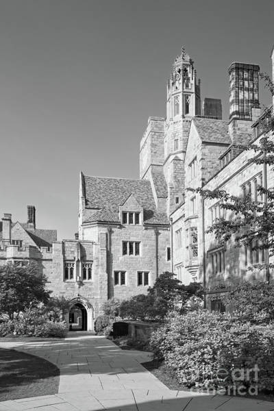 Photograph - Yale University Saybrook College by University Icons