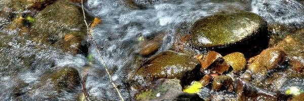 Photograph - Yamhill River Flow P by Jerry Sodorff