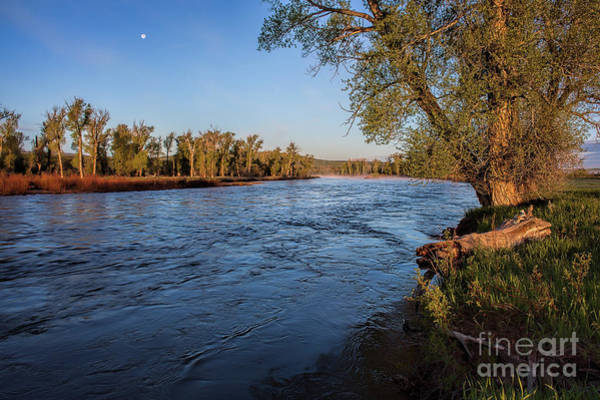 Photograph - Yampa Morning by Jim Garrison
