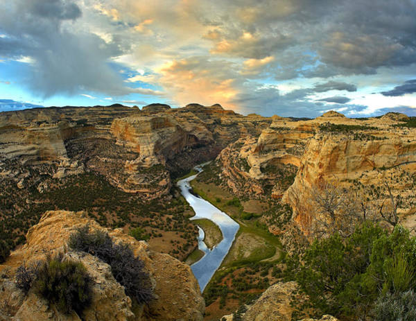 Dinosaur National Park Photograph - Yampa River Dinosaur National Monument by Tim Fitzharris