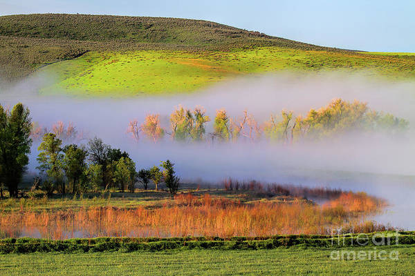 Photograph - Yampa Valley Morning by Jim Garrison