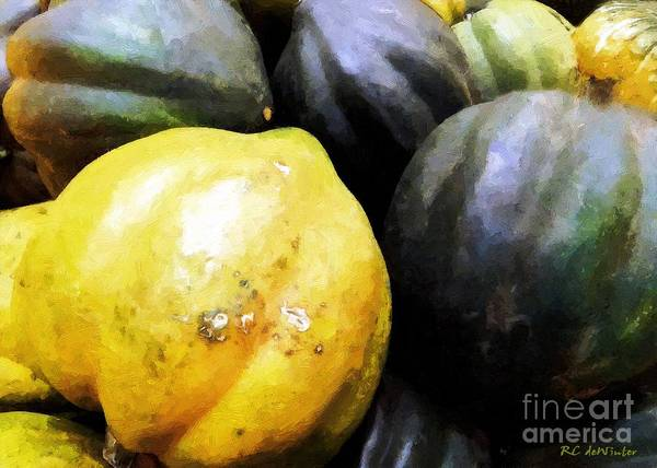 Winter Squash Painting - Yankee Staple by RC DeWinter