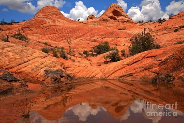 Photograph - Yant Flat Canyon Reflections by Adam Jewell