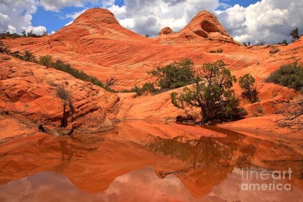 Photograph - Yant Flat Hidden Gem by Adam Jewell