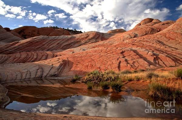 Photograph - Yant Flat Pond by Adam Jewell
