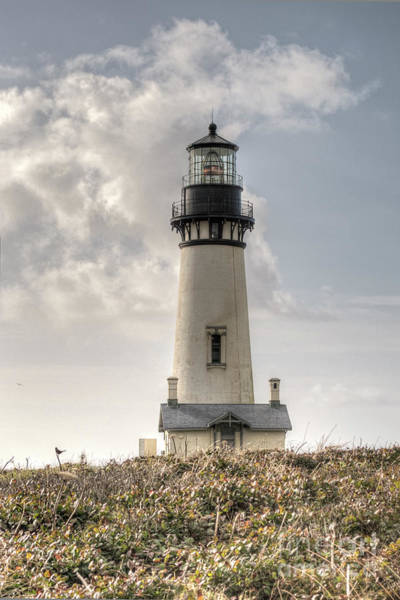 Photograph - Yaquina Head Lighthouse by Craig Leaper