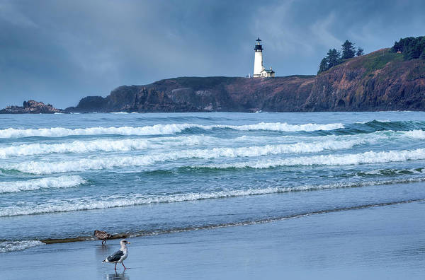 Photograph - Yaquina Head Lighthouse by Harold Coleman