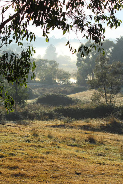 Photograph - Yarra Glen On A Beautiful Autumn Morning No2 29-03-2015 by Bert Ernie