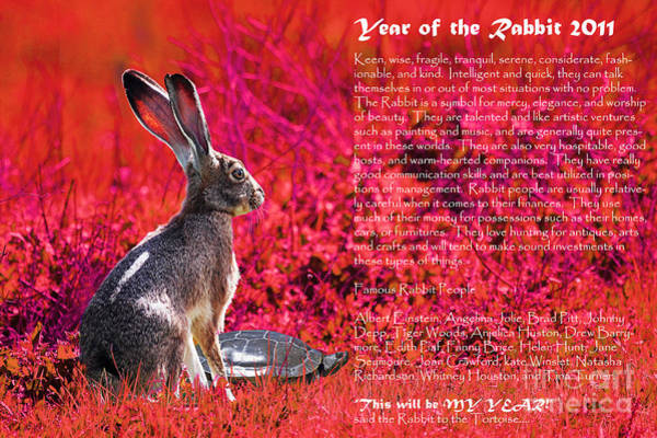 Chinese New Year Rabbit Wall Art - Photograph - Year Of The Rabbit 2011 . Red by Wingsdomain Art and Photography