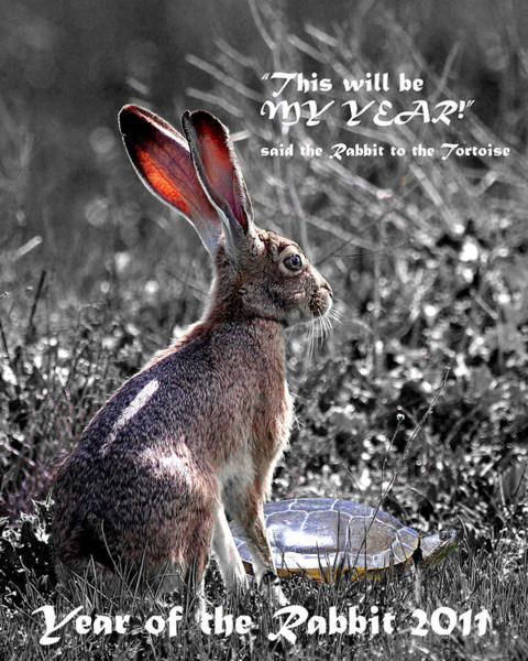 Chinese New Year Rabbit Wall Art - Photograph - Year Of The Rabbit 2011 . Vertical Bw by Wingsdomain Art and Photography