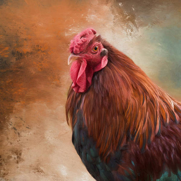 Photograph - Year Of The Rooster 2017 by Robin-Lee Vieira
