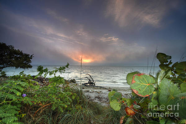 Wall Art - Photograph - Years End Sunrise by Rick Mann