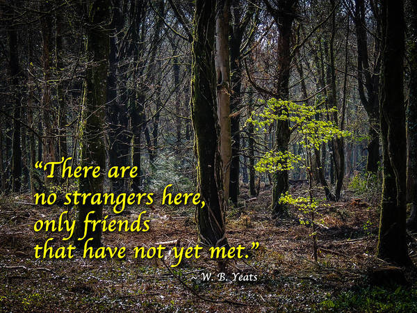 Photograph - Yeats Quote-there Are No Strangers... by James Truett