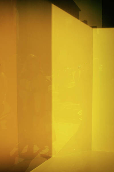 Photograph - Yellow Abstract No. 1 by Michael Evans