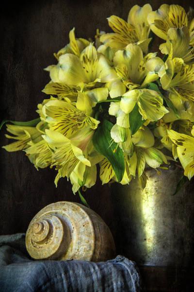 Alstroemeria Photograph - Yellow Alstroemeria Still Life by Cindi Ressler