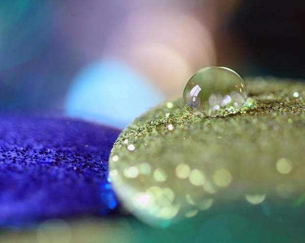 Photograph - Yellow And Blue Glitter by Angela Murdock