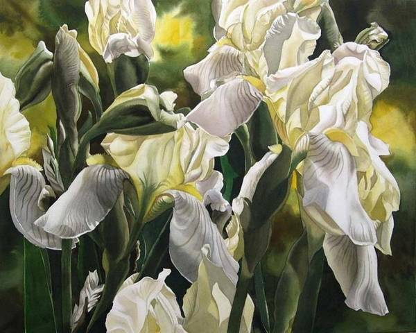 Painting - Yellow And White Irises by Alfred Ng