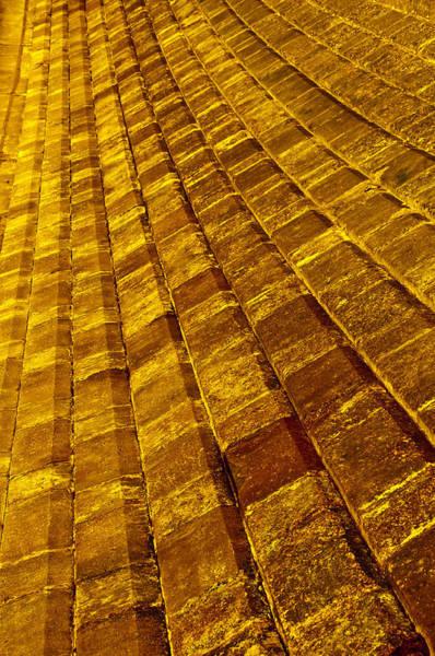 Wall Art - Photograph - Yellow Brick Road by Tiger Arts